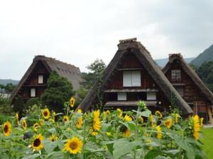 201208sirakawago_4