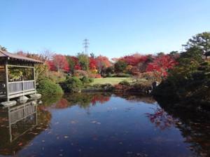 20121111_hiraoka1