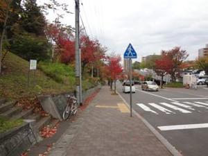 20141013_moiwa_yamahana_trip01