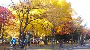 20151101_hokudai_3