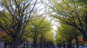 20161030_hokudai_1