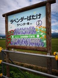 20180714_farm_tomita_18