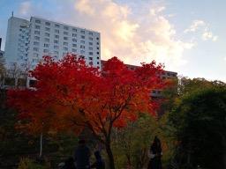 201810_jyozankei_18