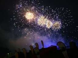 201907-firework-flowers-2