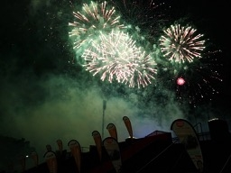 201907-firework-flowers-3