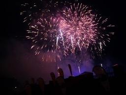 201907-firework-flowers-4