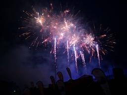 201907-firework-flowers-6