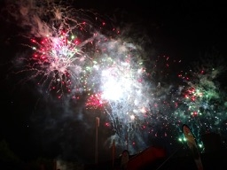 201907-firework-flowers-8