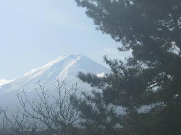 20111223_in_fujikyukou