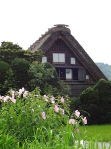 201208sirakawago_6