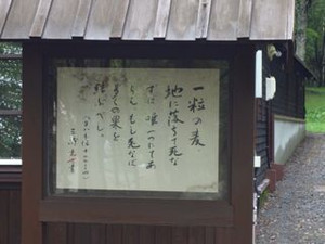 20140808_furano_biei03