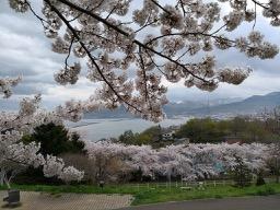20180504_nakajima_parktemiya_park_8