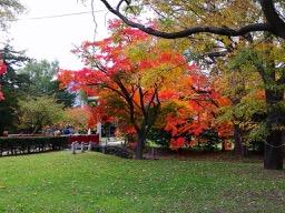 20181028_nakajima_park_and_hokuda_2